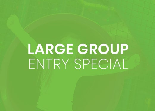 large_group